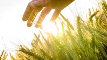 農業+大數據=未來新趨勢
